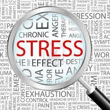 Eiopa lanza el test de estrés del sector asegurador una semana antes de lo previsto